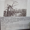 What was left of the garden after the bomb, Shukkeien Garden, Hiroshima, Japan (FAVAustinTX) Tags: hiroshima japan shukkeiengarden