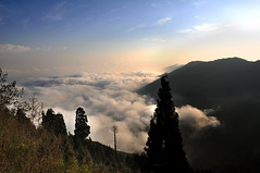 Untitled... (sayed kallol) Tags: darjeeling westbangle india cloud hill sunny morning nikon d90 18105 sky outdoor lanscape mountain landscape