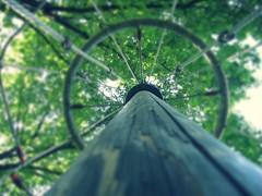 Roundabout Blur, Danielle (International School of Berne Student Photography) Tags: danielle