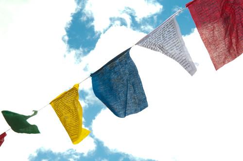 MF12-SETTING-Banners-CREDIT-MelissaPlantz-3763