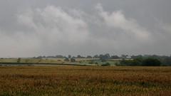 Keyworth: A Summer's Evening (R-V-P) Tags: uk rain clouds corn cornfield overcast powershot keyworth g7 caonon nottinghamshireengland