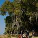 Fort Frederica National Monument 14