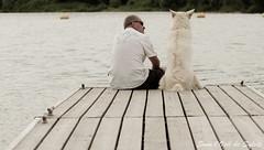 Friendship (Sous l'Oeil de Sylvie) Tags: summer dog chien back pentax july stgeorges dedos lien paco t amis juillet quai amiti beauce tamron90mm candidshot rivirechaudire k30 chiendetraineau jeunechien sousloeildesylvie chienetsonmaitre