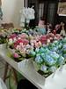 Encomenda Vasos de flores em tecido 100% algodão (Rossandra Nascimento) Tags: tulipas rosas vasos flordetecido cachepô tulipadetecido vasinhosdemdf lembrançatemajardim