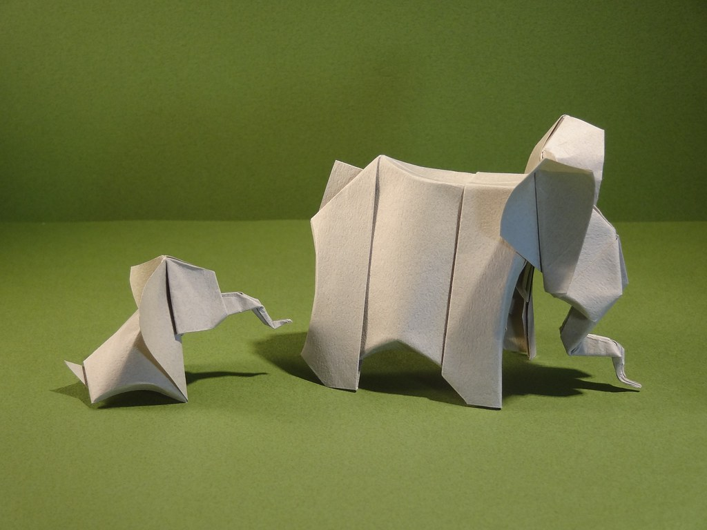 The Worlds Best Photos Of Barth And Dunkan Flickr Hive Mind Origami Parrotdiagram By Ecorigami Rui Elephant Baby Sweep 64 Tags Papier