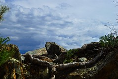 091a (annibale barone) Tags: sea sun nature water silhouette água forest marina agua rocks mediterranean mare glare stones liguria marin horizon pietre sail seafront sole ghiaia rocce spiaggia contrejour photographing fischer controluce azur preservation appennino bosco sabbia scogli ovada fotografando profili marenostrum ligurien marligure appenninoligure biodiversità southeurope countrylandscapes mareligure angolinascosti mygearandme mygearandmepremium mygearandmebronze ab360gradi annibalebarone rememberthatmomentlevel1 paesaggiritrovati vigilantphotographersunite vpu2