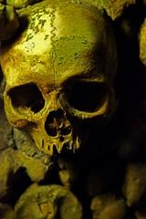 Catacombs of Paris (Hari Adivarekar) Tags: paris france underground skulls europe streetphotography catacombs subterranean sepulchre massgrave travelphotography femurs catacombsofparis boneart catacombsparis interned hariadivarekar morbidart hariadivarekarphotography 6millionskeletons deadparisians