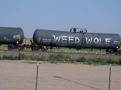 WEED WOLF (VISI♢∩QÜΞ5†) Tags: weedwolf