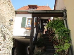 House is a Bridge (Mi-Wu) Tags: bridge house stairs germany town walls freinsheim
