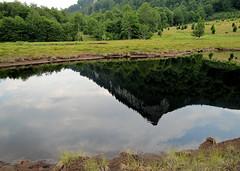 tószem / pond in the bog (debreczeniemoke) Tags: summer mountain reflection pond peak hegy bog tó gutin muskeg nyár tükörkép csúcs tőzegláp kakastaréj canonpowershotsx20is gutinhegység munţiigutâi creastacocoşului tăulchendroaiei tószem munţiigutin gutinmountains