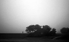 The little village in winter (Aranya Ehsan) Tags: village sillhoutte monochrome bnw bw black blackandwhite sky white bangladesh people life dailylife canon minimalism tree flickrtravelaward
