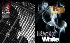 Capa BW Bucci (Bucci 10) Tags: bw brasil publish bucci publicao sonyminolta robsonbucci