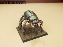 Giant Scarab Beetle
