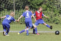 Feriencamp Neumnster 28.07.16 - b (59) (HSV-Fuballschule) Tags: hsv fussballschule feriencamp neumnster vom 2507 bis 29072016