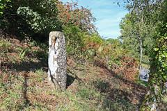 Sticklepath Cross, Dartmoor (Dartmoor Mike) Tags: sticklepath cross devon dartmoor crosses