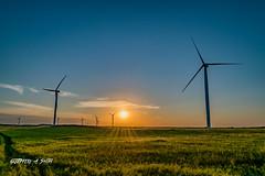 DSC_2140 (Jeffery A. Smith) Tags: bottineau northdakota nikond3300 nikon windtower wind renewable sunset field windfarm electric electricity windpower turbine windmill