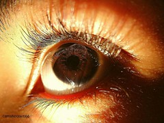 Clicked my eye. (camshooter666) Tags: photography photo photos picture pictures pic pics snapshot art beautiful instagood picoftheday photooftheday color allshots exposure composition focus capture moment