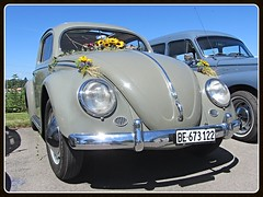 VW Beetle. 1955-57 (v8dub) Tags: vw beetle volkswagen fusca maggiolino kfer kever bug bubbla cox coccinelle suisse schweiz switzerland seedorf german pkw voiture car wagen worldcars auto automobile automotive aircooled old oldtimer oldcar klassik classic collector