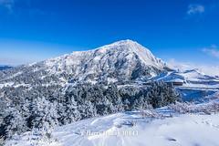 Harry_30843,,,,,,,,,,,,,,,,,,,,,,Hehuan Mountain,Taroko National Park,Snow,Winter (HarryTaiwan) Tags:                      hehuanmountain tarokonationalpark snow winter mountain     harryhuang   taiwan nikon d800 hgf78354ms35hinetnet adobergb