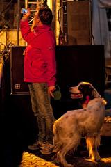 Walking your dog (Mark A.H.) Tags: camera holland netherlands europa europe fotograf photographer candid nederland holanda paysbas fotgrafo kamera olanda camra fotografo macchinafotografica niederlande photographe cmara hollande fotograaf pasesbajos paesibassi