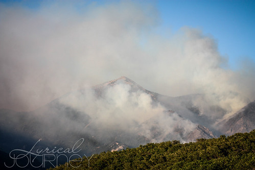 Alpine Quail Fire (19 of 33)