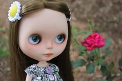 Beautiful Sarah Montanna