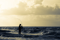 Loading the Rod (Mabry Campbell) Tags: morning usa seascape man gulfofmexico water silhouette sunrise person photography dawn fly us photo fishing surf texas gulf tx horizon unitedstatesofamerica july coastal photograph rosemary 100 freeport surffishing wading 2012 bending f40 waterscape surfside 200mm surfsidebeach ef200mmf28liiusm brazoriacounty wadefishing cirve backcast ¹⁄₆₄₀₀sec mabrycampbell july62012 201207062115