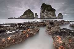 Motukiekie Galaxies (Joshua Cripps) Tags: longexposure sea newzealand seascape beach sunrise moody starfish southisland tasman drama tidepool seastack motukiekie
