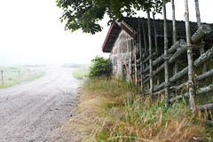 Country morning (just.like.that.) Tags: road morning summer mist lines misty fog fence landscape countryside early sweden farm country rustic foggy july smland diagonal sverige gravel damp rootcellar morgon landskape dimma staket countryscape ruralscene grdesgrd jordkllare patricivan hankagrdsgrd