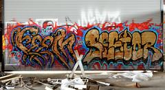 feem / sestor (thesaltr) Tags: art abandoned graffiti bayarea eastbay urbex feem tfn femer sestor b003 thesaltr