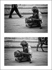 move ON (ayashok photography) Tags: bw holiday man temple cow blackwhite diptych walk madras disabled chennai bnw challenged physicallychallenged onwheels northmadras ayashok northchennai sowcarpet ayashokphotography