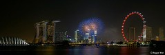 Happy Birthday Singapore! (Reggie Wan) Tags: city night evening singapore asia southeastasia cityscape fireworks mbs modernbuilding marinabay marinacentre moderncity asiancity nationaldaycelebration marinabaysands sonya700 sonyalpha700 marinabaysingapore reggiewan gettyimagessingaporeq1