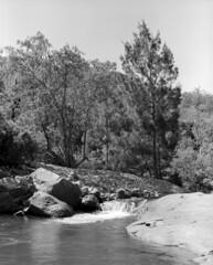 Alligator Creek Riverbend (Unbendable Girder) Tags: park trees slr mamiya film creek river kodak tmax alligator bank australia 11 rapids d76 mount national queensland medium format elliot townsville 100iso rb67 sekor prosd