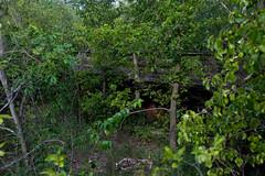 120812_joliet-5561 (vincentJOHNSON) Tags: ca railroad abandoned illinois ruins decay tracks railway trains turntable gmo joliet roundhouse urbex railfanning