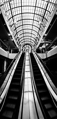 One Way Up & One Way Down (tobyharriman) Tags: 2012 7d crockergalleria northerncalifornia americabyrail architecture bw bayarea blackwhite blackandwhite buildings california canon city downtown escalator fisheye nik photowalk pictures sanfrancisco sf silverefexpro tobyharriman