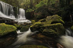 Horseshoe Falls II 2012 (andrewfuller62) Tags: landscape waterfall nationalpark nikon rainforest australia wideangle falls tasmania nikkor f11 horseshoefalls waterscape temperate 19mm temperaterainforest mtfieldnationalpark 1sec nikkor1735mmf28d the4elements nikond700 scnicsnotjustlandscapes bwkaesemann105mmcpl