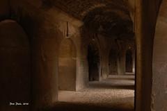 160809 1022 (chausson bs) Tags: arles 2016 amfiteatre anfiteatro