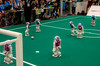 IMGP7358.jpg (Ingo Scholtz) Tags: fusball juli2016 juni2016 leipzig robocup2016 robocup roboter robots soccer