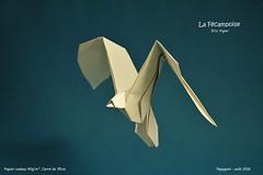Goeland - Eric Vigier (Papygami) Tags: pliage de papier origami papiroflexia oiseau en vol bird mouette goeland eric vigier papygami
