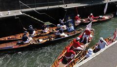 Swan Upping 1 (tonycrake) Tags: swans riverthames boulterslockmaidenhead rowingboats cygnets flags