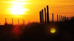 Sundown (enzomagrinijr) Tags: sundowncarrancasmgbrazil prdosol entardecer sky cu