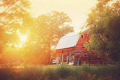 :: evening light :: (mjcollins photography) Tags: rural minnesota barn decay evening sun set light flare country farm red outdoor structure
