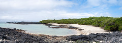 Coin de paradis (LynxDaemon) Tags: galapagos beach vacations secluded ocean pacific black rocks green exceptional specland