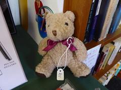 1Fri Minehead Dee1 (g crawford) Tags: crawford dt dangerted ted teddy dee minehead somerset