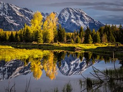 dawn - Schwabacher's Landing - Teton National Park - 5-25-15  03  Explore! (Tucapel) Tags: wyoming jackson grandteton national park water reflection mountain tree outdoor