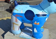 Skipper-E-17-September-2016 (Steve Ellwood Whitley Bay) Tags: greatnorthsnowdogs guidedog mikeclay northshields cliffordsfort ellwood steveellwood skipper joannewishart dfds westernquay fishquay