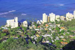 Miniature Neighborhood (Rising Tide Images) Tags: miniature community neighborhood beach hawaii diamondhead architecture selectivefocus