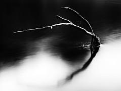 River Don Monochrome (PeskyMesky) Tags: aberdeen riverdon don minimal le longexposure mist blackandwhite schnbrunnpalace flickr canon canoneos500d