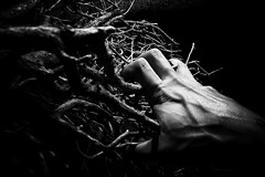 Adendum (Daniel Iván) Tags: tree dark hand goth árbol mano vein veins uncanny vena oscura gótica extraño venas blackwhitephotos