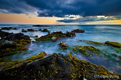 (Treven Wong) Tags: ocean sunset sea sky orange seascape seaweed beach nature water beauty clouds sunrise landscape hawaii sand nikon rocks natural cloudy wide sealife crabs 1024 d7000